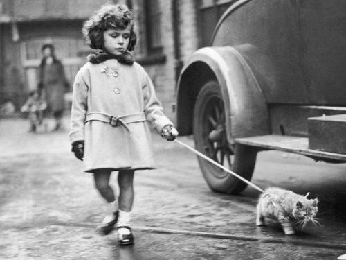 Darling little girl walking a cat in a very chic coat 1930s
