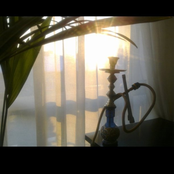 Love sun rays thro ma window in the mornings… Bye bye winter
