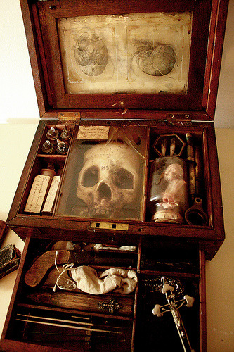 18th century Vampyr anatomical research case. Owned by the physician and naturalist Francis Gerber. http://alexcf.com/blog/?page_id=18 Alex CF 2009.