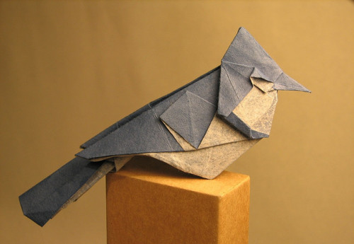 Blue Jay by Origami Roman.