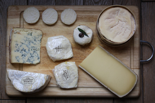 fuckyeahqueso:  cheeses!!! We have neglected to post anything cheese related for months. So here are some cheeses as an apology!