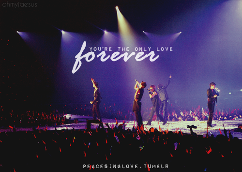 peacesinglove:  forever love, on repeat
