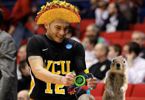 Joey Rodriguez. Bop-it! Interrupting Squirrel. Taco hat. (via lkhleang)