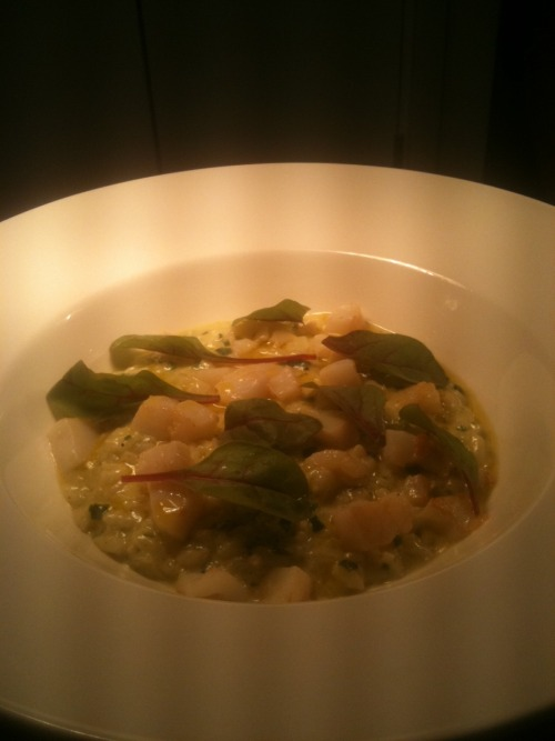 Hand-picked Cottingham wild garlic risotto with roasted North Sea scallops and 'cold press' rapeseed oil