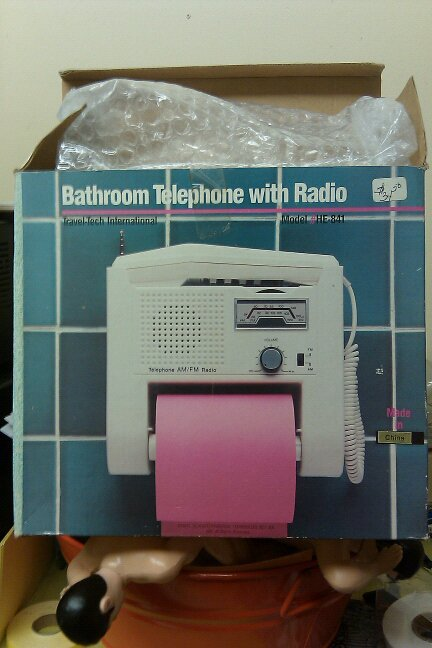 Bathroom Telephone with Radio