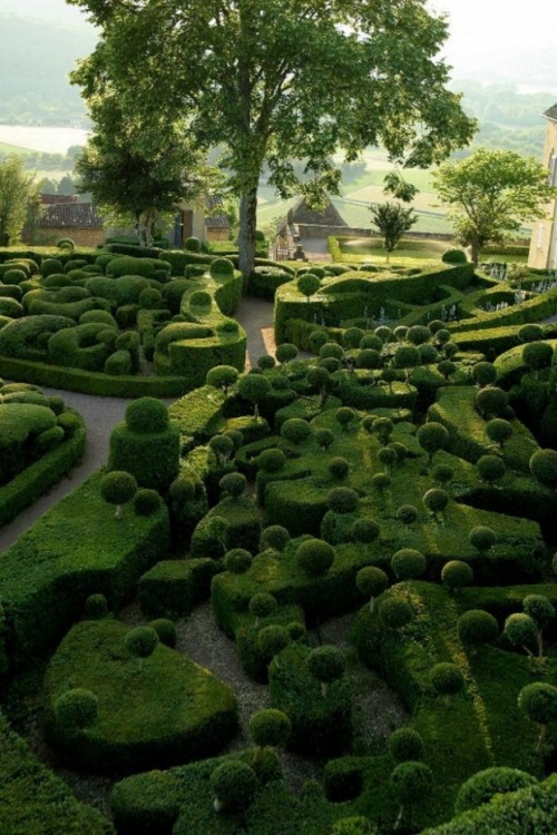 maison21:  The Beautiful Gardens of Marqueyssac in France, via inspirefirst