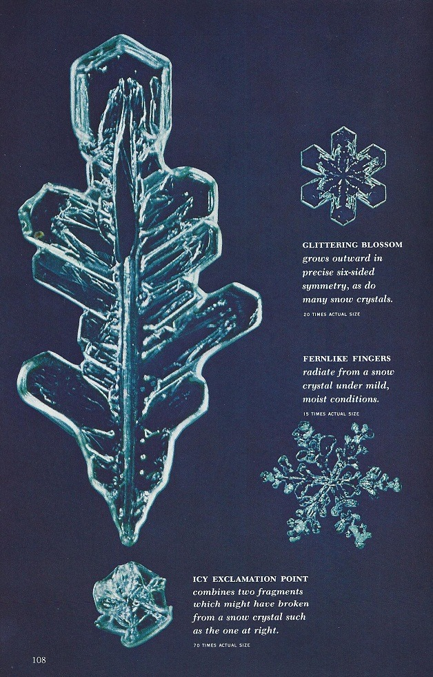 January 1970 - These are real snowflakes..