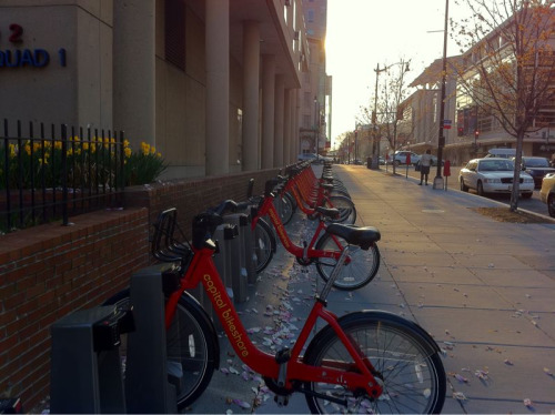 Today was a gorgeous day for a Capital Bikeshare ride on the homebound commute. It doesn't hurt that it takes almost exactly the same amount of time as my bus/metro regular commute.