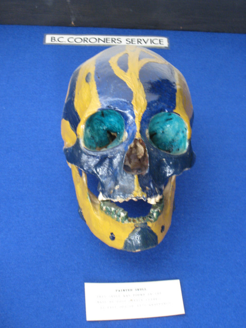 "This is a painted skull that was sent in to the Vancouver Police Department. It's housed at the Vancouver Police Centennial Museum in Vancouver, B.C. Atlas Obscura doesn't provide any additional details on the painted skull, but this is tantalizing:  Among its more curious exhibits are [… ] an exhibit of the police officers who have died in the line of duty since 1886, some fairly intense anatomical specimens left over from crime analysis, the ""milkshake murderer exhibit,"" and—in the behind-the-scenes area, which you can see on a tour—the ""blood drying room.""  Photo Source: jiblite's Flickr."