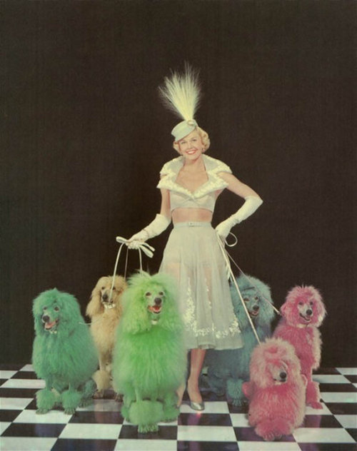 suddenfabulosity:  Doris Day.