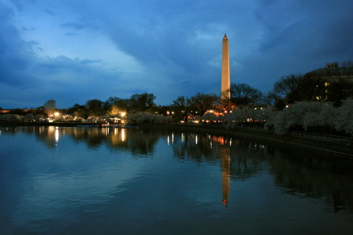 "Washington DC, Virginia The Monument, a.k.a, ""Toothpick"" :)"