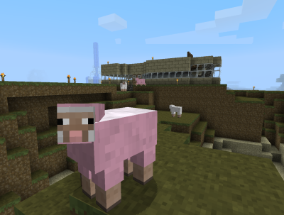 First pink sheep I've seen. (You can see a second one in the back.)
