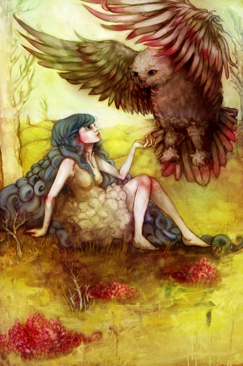 """The Wise Owl Prowls"" by flyk"