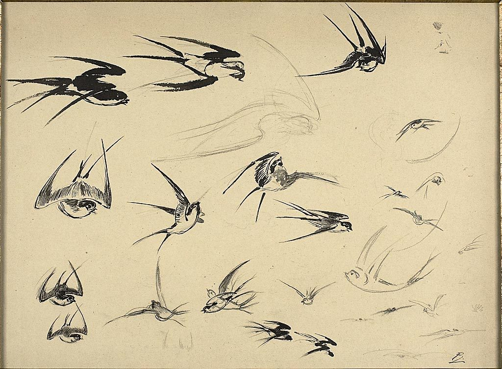 Félix Henri Bracquemond French, 1833-1914The Swallows, c. 1881