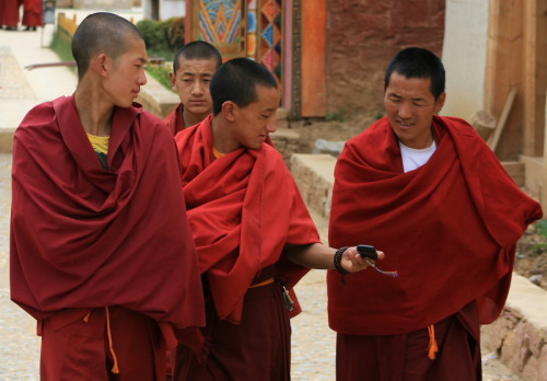 Portraits of China: Monks at Ganden Sumtseling Monastery near Zhongdian Shangri La County in the Diqing Tibetean Autonomous Prefecture