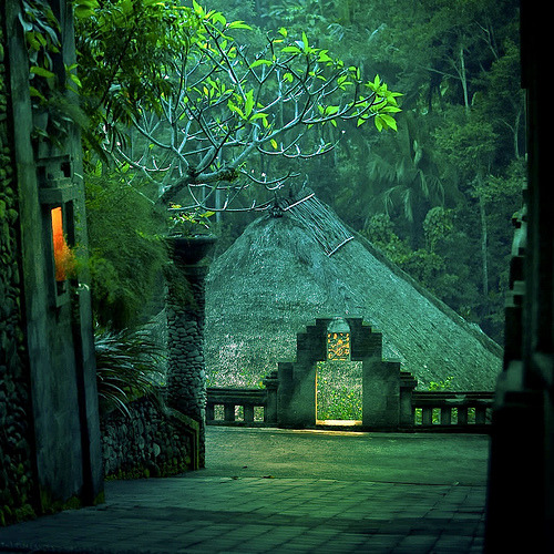 magicalnaturetour:  Cuba Gallery: Green rainforest villa (by ►CubaGallery) :)