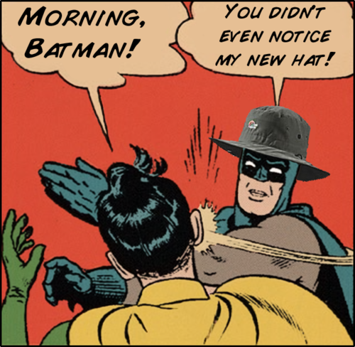 Batman and Robin; an average day in the life.