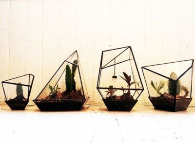 designage:  We've been going terrarium-crazy. Really love these geometric prisms but the prices are a little $$$.   I've been in love with terrariums since I was introduced to them through my internship with the Philadelphia International Flower Show.