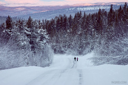 Laisvall, Norrbotten - North of Sweden  submitted by: inqrid, thanks!