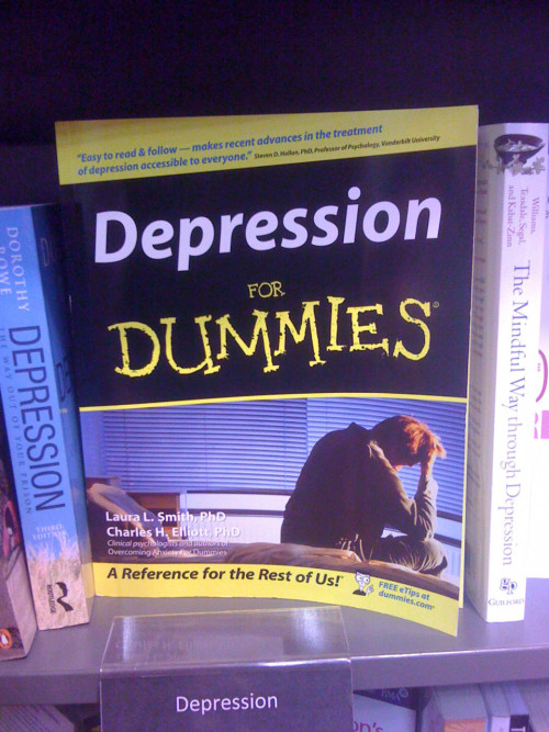 "thedailywhat:  Poorly Thought-Out Book Title of the Day: And this is why affixing the words ""For Dummies"" to every topic might not be the best idea. [reddit.] See Also: 8 books that probably shouldn't insult you in the title."