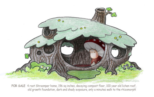 FOR SALE - 4 root Shroomper home, 196 sq inches, decaying compost floor, 100 year old lichen roof, old growth foundation, dark and shady exposure, only a minutes walk to the rhizomorph!