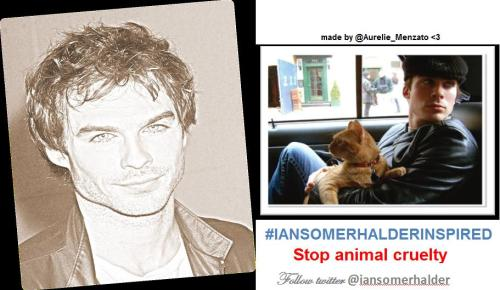 Thank You @Aurelie_Menzato for your very creative #iansomerhalderINSPIRED collage signs <3