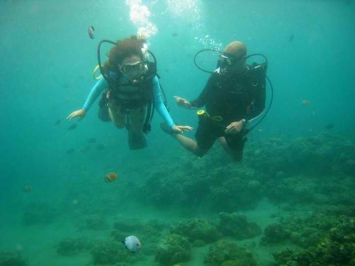 GPOYW: The I-Wanna-Live-Underwater Edition Anilao has the best marine life ever. (Well, I really wouldn't know since I just started diving and I've only been to Palawan before this so don't take my word for it but it really is an amazing place.) There's a different world down there and it's worth seeing, worth the fear, the dry throat, the barnacle cuts and the sore thighs.
