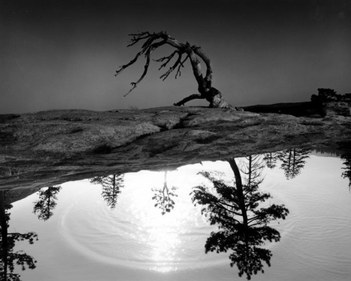 """Visual Landscapes"" by Jerry N. Uelsmann"