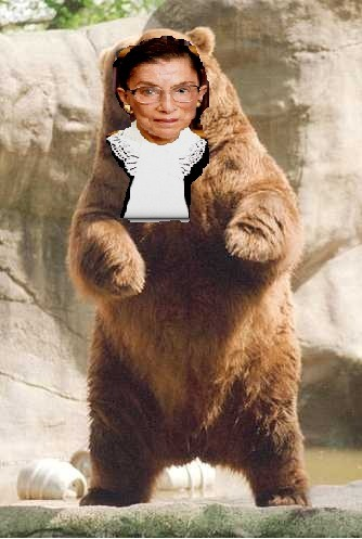 "Supreme Court Zoo 1 0f 9 ""Ruth Bad Bear Ginsburg"""