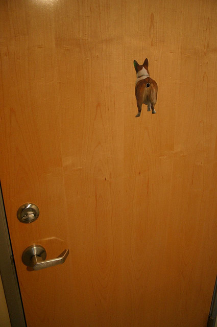 corgiaddict:  Peephole.  Not sure what to say about that.