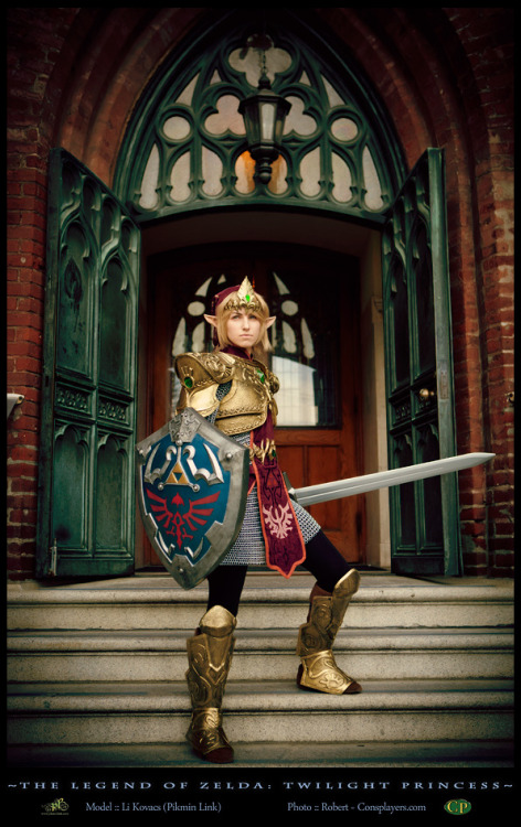 Defending Hyrule -Link Cosplay by *pikminlink