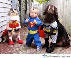 pinterest The bestest super heroes ever!!! No villain is safe in this alley way while we're here! Original Article