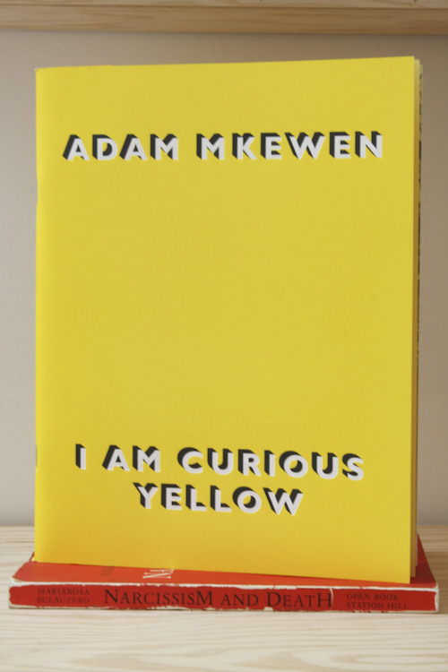 "Adam McEwen, I am Curious Yellow ""i could eclipse and cloud them with a wink"" Adam McEwen / Nicole Klagsbrun Gallery, New York, 2010 11 x 8 ½ inches (28 x 21.5 cm) designed by an art service SOLD"