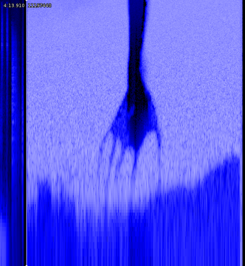 deletingpermissions:  A spectrogram of the noise at the end of My Violent Heart, a track from the Nine Inch Nails' album Year Zero, which criticizes contemporary policies of the United States government by presenting a dystopian vision of the year 2022. I am trying to believe.