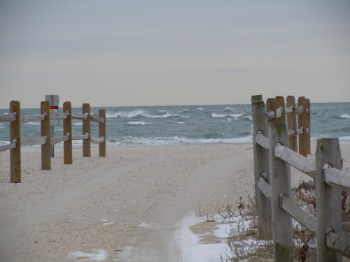 hah… almost forgot about this. i love the beach in the winter <3