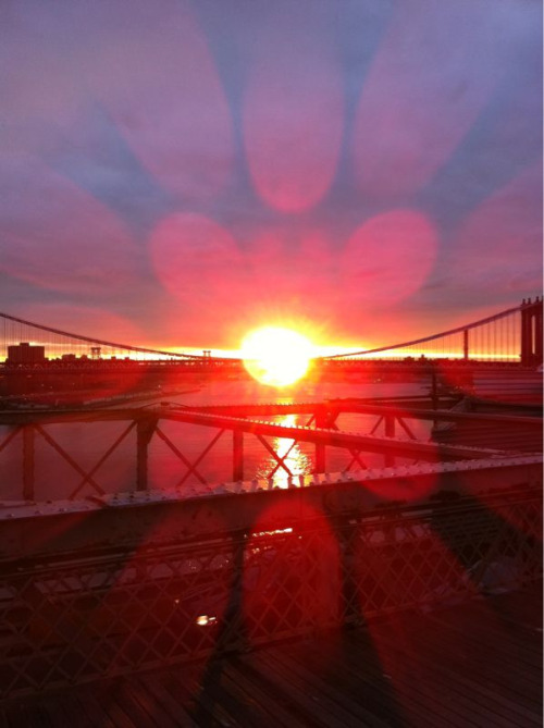 Good morning from the Brooklyn Bridge! Perfect start to my day.
