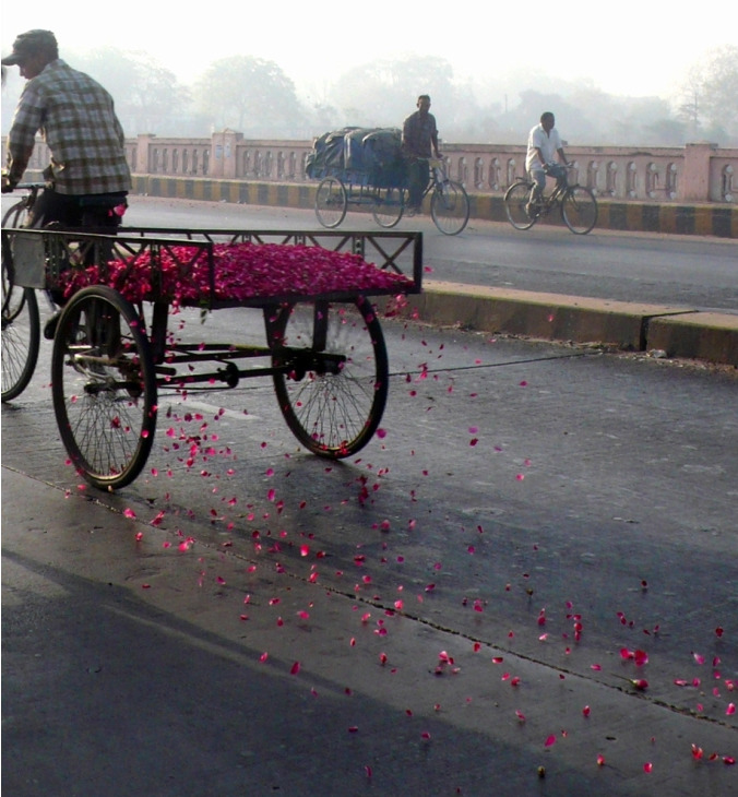 Ko Siu Lan, All That is Rose Melts Into Air, Street Works, 120 Kg Rose Petals, Tricycle 1 Hour, India, 2008