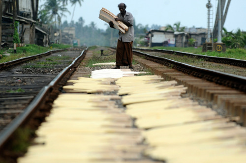 A Sri Lankan carpenter carries a stock of unfinished wooden cricket bats outside a roadside factory in Colombo's suburban Mortatuwa area on February 22, 2010. Bats are in demand at this small factory in cricket-mad Sri Lanka, where the home team was touted as one of the favorites to win the 2011 cricket World Cup. Sri Lanka won in 1996 and was runner-up in 2007. (Ishara S.Kodikara/AFP/Getty Images) #