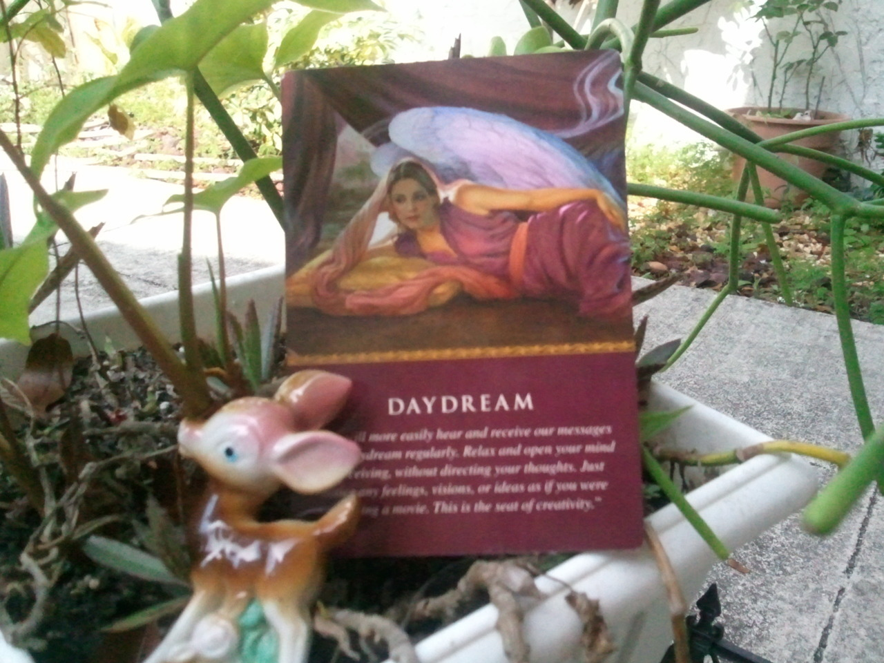 "Do you like to daydream? Today I picked the Daydream Angel Card from my deck. I love to daydream…in fact it used to be a part of my daily routine. But I get so busy ""living"" my dream, that I dont get to day dream any more. Todays Angel card reminded me that I still need to daydream…sigh…"