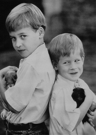 lovelydianaprincessofwales: Prince William and Prince Harry