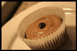 Mocha Stout Cupcakes 3/4 cup soy milk  1 tsp vinegar  1 cup all-purpose flour  1/3 cup cocoa  1/2 tsp baking powder  1/2 tsp salt  1 tbsp finely ground coffee  1/4 cup vegan stout/porter (I used Mill Street Coffee Porter) 1/2 cup agave nectar  1 tsp vanilla extract  1/2 cup oil  Preheat oven to 325F. Whisk soy milk and vinegar together; set aside. Sift dry ingredients. Combine rest of wet ingredients with soy milk mixture and whisk until frothy. Combine dry ingredients with wet and mix well. The recipe for these is based on a chocolate stout cupcake recipe from this book, which I really think all sweet-toothed vegans should have in their kitchens! I baked these for about 25 mins in cupcake liners. Agave syrup instead of sugar makes for a seriously moist cupcake. I topped with a vegan cream cheese-based frosting which had about 1/4 cup stout, 1/2 cup cocoa, 1 tsp vanilla extract, 1 tsp corn starch, 1/8 cup agave nectar, and half a container of vegan cream cheese. Finishing touch is a coffee bean on each one.