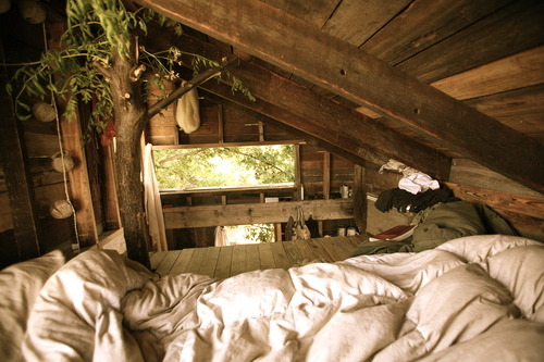 I want this as a bedroom…. :P not a tree house!