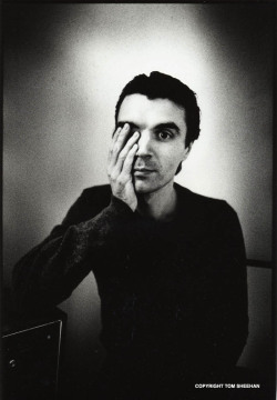 Maybe I'm just weird, but I've always found David Byrne to be very attractive.