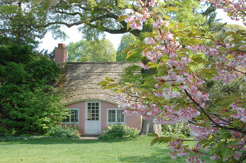 Cherry Blossom Cottage.