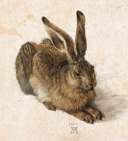 adove:  i used to think about being the 847359th person with a durer hare tattoo