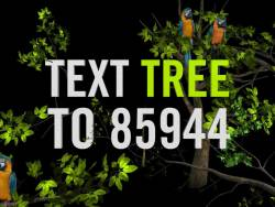 Text TREE to 85944  this Earth Day  and  ReGreen the World. $5 will plant 5 trees in some of the world's most deforested countries.
