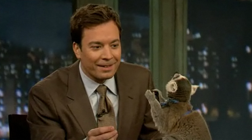 Jimmy Fallon vs. Lemur