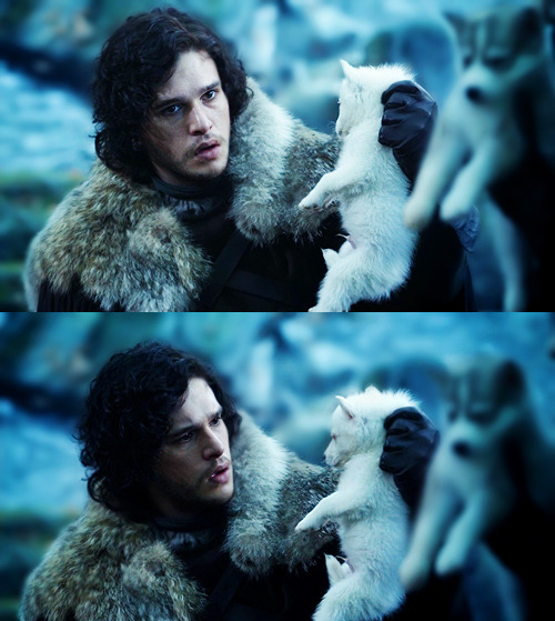 "Jon Nieve y Fantasma. ""Ah, the runt of the litter. That one's yours, Snow."""
