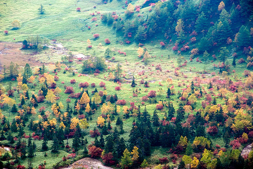 hellanne:  colored valley (by takay)
