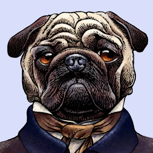 Edgar Allen pug, and more of Chet Phillips' authors-turned-dogs (and cats)